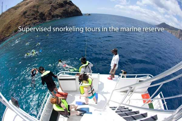 Snorkeling with Dive Dominica