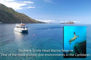 Dive Dominica - Soufriere Scotts Head Marine Reserve
