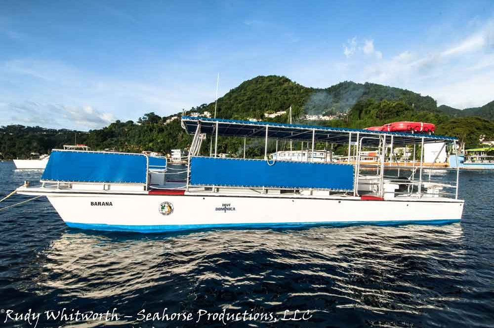 dive-boat-barana-1000x667