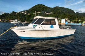 dive dominica dive boat Yan-Yan